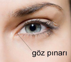 goz_pinari